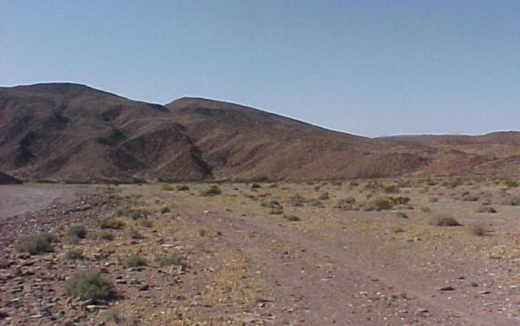 Foto de terreno habitacional en venta en  5, san felipe, mexicali, baja california, 1734556 No. 10