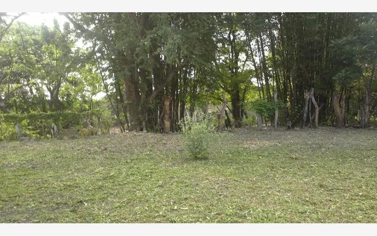 Foto de terreno habitacional en venta en  53, san pedro apatlaco, ayala, morelos, 471888 No. 03