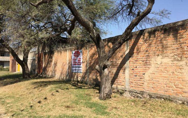 Foto de terreno habitacional en venta en  55, las pintas, el salto, jalisco, 1486071 No. 08