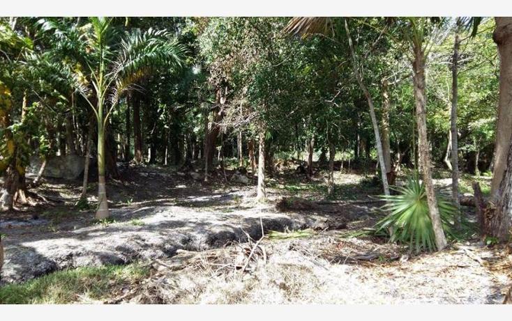 Foto de terreno habitacional en venta en  6, bacalar, bacalar, quintana roo, 1672288 No. 03
