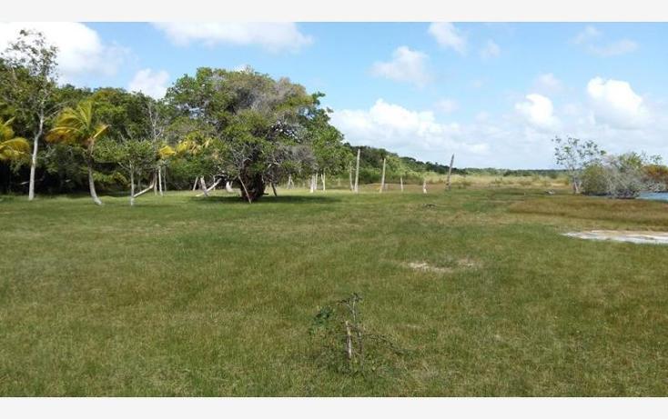 Foto de terreno habitacional en venta en  6, bacalar, bacalar, quintana roo, 1672288 No. 06