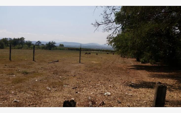 Foto de terreno habitacional en venta en  6, coatetelco, miacatlán, morelos, 1705884 No. 01
