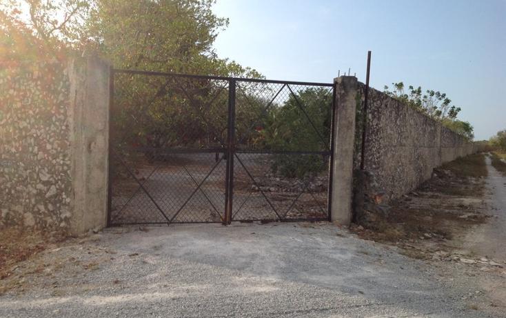Foto de terreno habitacional en venta en  , 60 norte, mérida, yucatán, 456397 No. 03