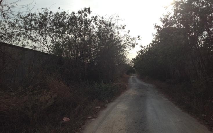 Foto de terreno habitacional en venta en  , 60 norte, mérida, yucatán, 456397 No. 04