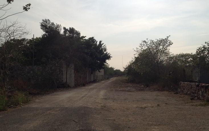 Foto de terreno habitacional en venta en  , 60 norte, mérida, yucatán, 456397 No. 09