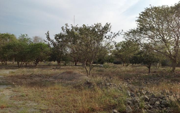 Foto de terreno habitacional en venta en  , 60 norte, mérida, yucatán, 456397 No. 16