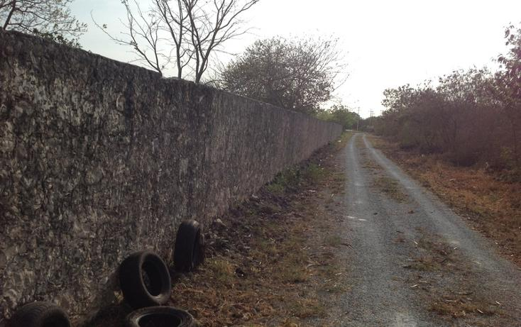 Foto de terreno habitacional en venta en  , 60 norte, mérida, yucatán, 456397 No. 17