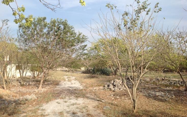 Foto de terreno habitacional en venta en  , 60 norte, mérida, yucatán, 456397 No. 20