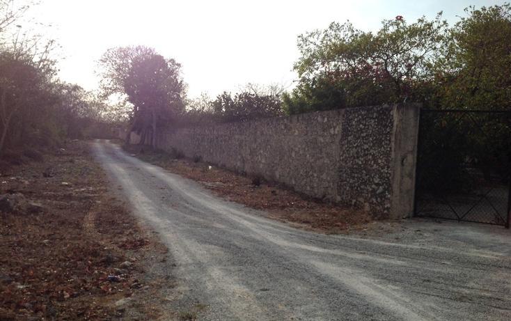 Foto de terreno habitacional en venta en  , 60 norte, mérida, yucatán, 456397 No. 22