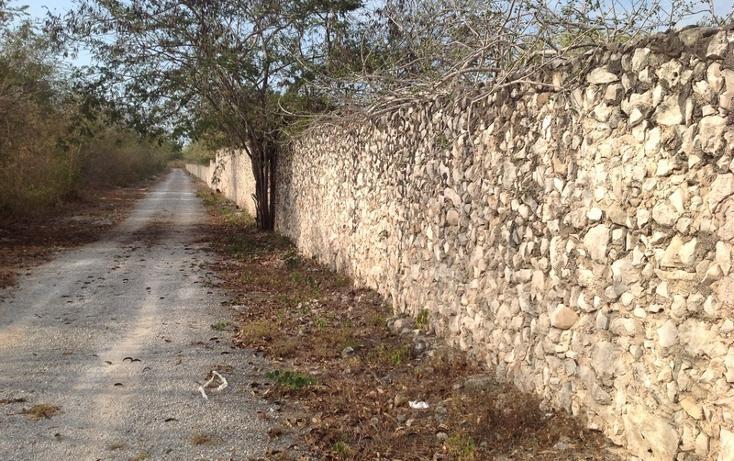 Foto de terreno habitacional en venta en  , 60 norte, mérida, yucatán, 456397 No. 23
