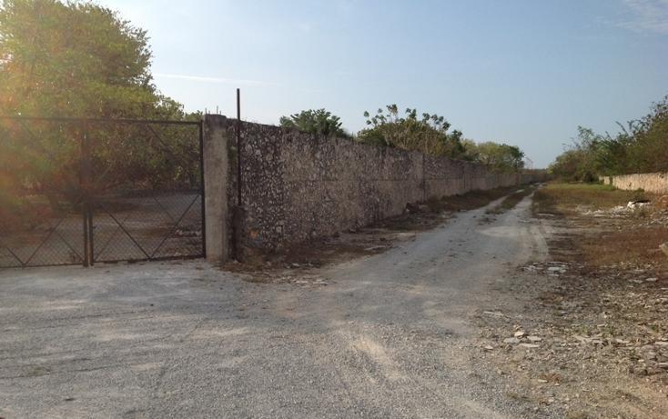Foto de terreno habitacional en venta en  , 60 norte, mérida, yucatán, 456397 No. 24