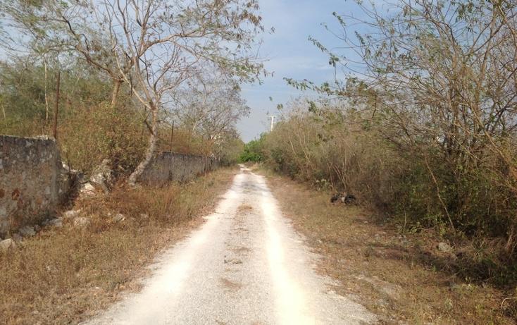 Foto de terreno habitacional en venta en  , 60 norte, mérida, yucatán, 456397 No. 28