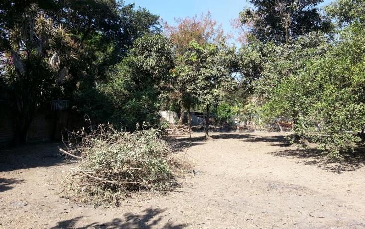 Foto de terreno habitacional en venta en  616, itzamatitlán, yautepec, morelos, 1745825 No. 10
