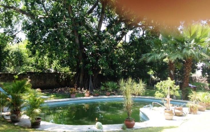 Foto de rancho en venta en 62790 1, alpuyeca, xochitepec, morelos, 1195039 No. 02