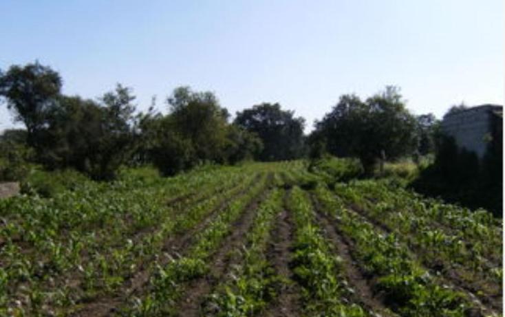Foto de rancho en venta en  72, guadalupe tlachco, santa cruz tlaxcala, tlaxcala, 387550 No. 03