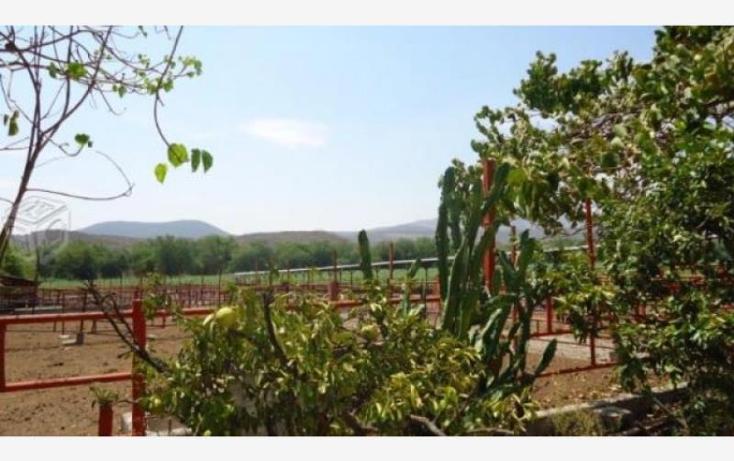 Foto de terreno habitacional en venta en  79, tehuixtla, jojutla, morelos, 1842994 No. 08