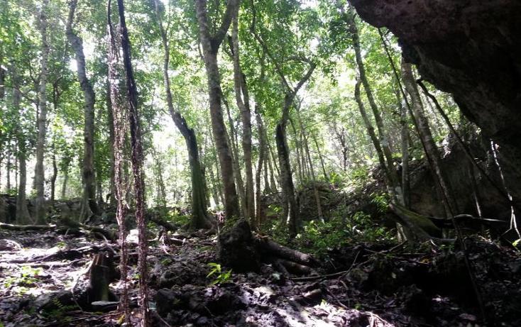 Foto de terreno comercial en venta en carretera 307 8kms, akumal, tulum, quintana roo, 2677900 No. 12