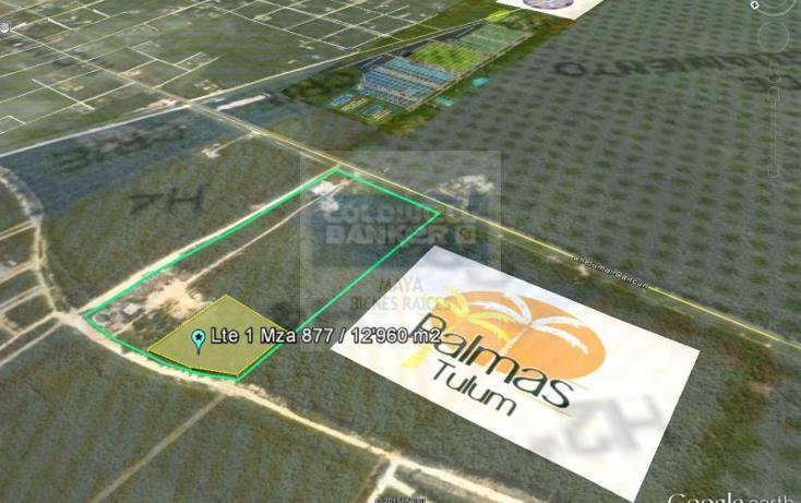 Foto de terreno habitacional en venta en  913, tulum centro, tulum, quintana roo, 784951 No. 04