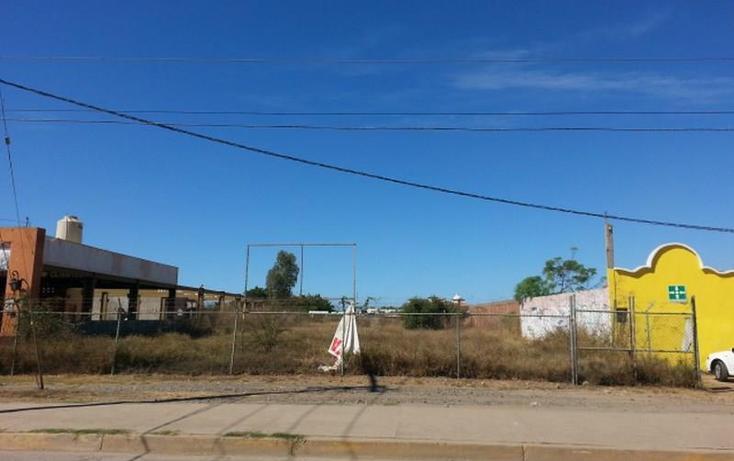 Foto de terreno habitacional en renta en  983, el conchi, mazatlán, sinaloa, 1325815 No. 07
