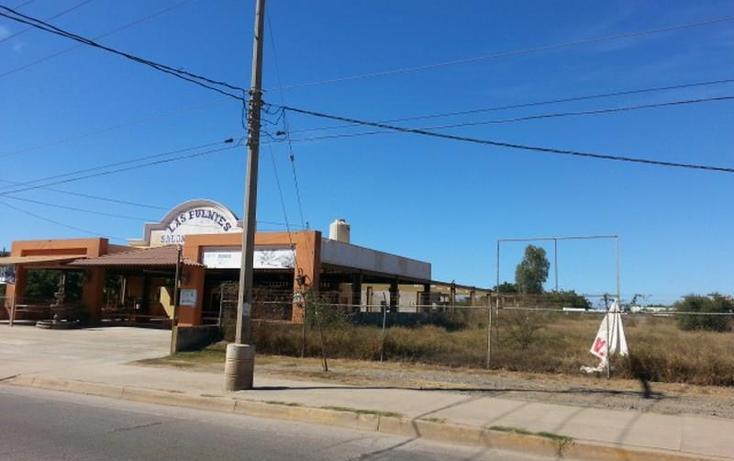 Foto de terreno habitacional en renta en  983, el conchi, mazatlán, sinaloa, 1325815 No. 08