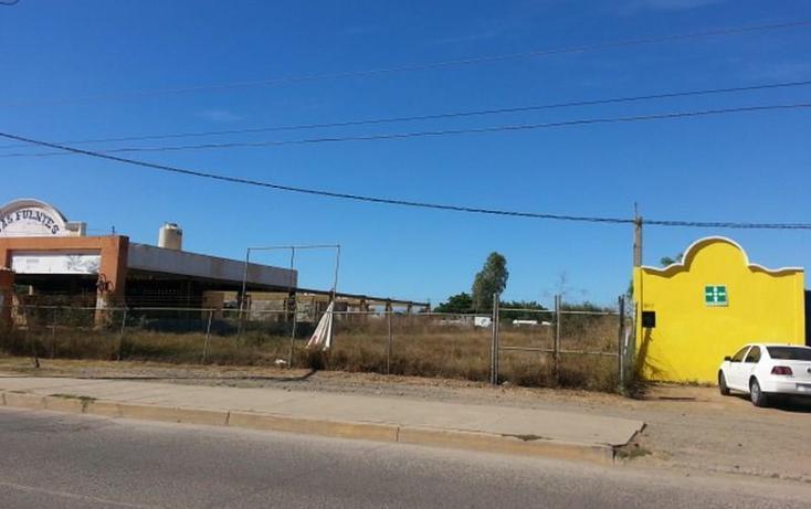 Foto de terreno habitacional en renta en  983, el conchi, mazatlán, sinaloa, 1325815 No. 11