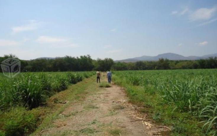Foto de terreno habitacional en venta en  99, tehuixtla, jojutla, morelos, 1745575 No. 04