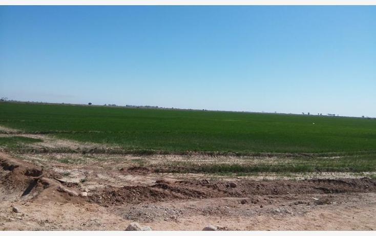 Foto de rancho en venta en  a 1000 mts. aprox ., sinaloa, mexicali, baja california, 1699052 No. 02