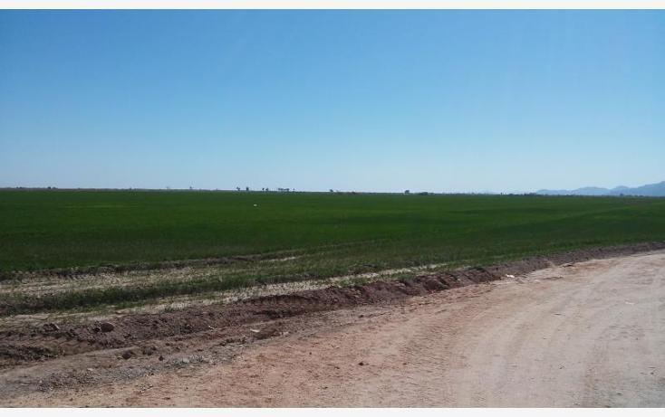 Foto de rancho en venta en  a 1000 mts. aprox ., sinaloa, mexicali, baja california, 1699052 No. 03