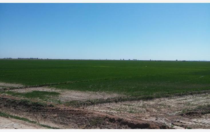 Foto de rancho en venta en  a 1000 mts. aprox ., sinaloa, mexicali, baja california, 1699052 No. 04
