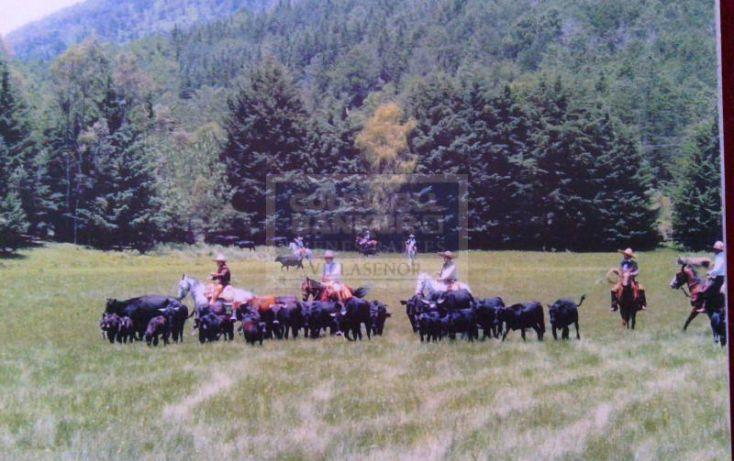 Foto de rancho en venta en a 20 min de valle de bravo, 1 hora 10 min del df y a 30 min del aeropuerto internacional de tol, villa victoria, villa victoria, estado de méxico, 345057 no 10