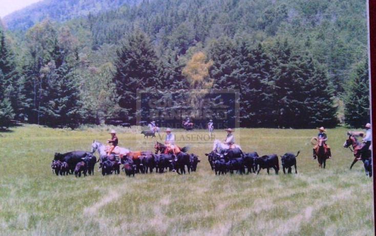 Foto de rancho en venta en  , villa victoria, villa victoria, méxico, 345057 No. 10