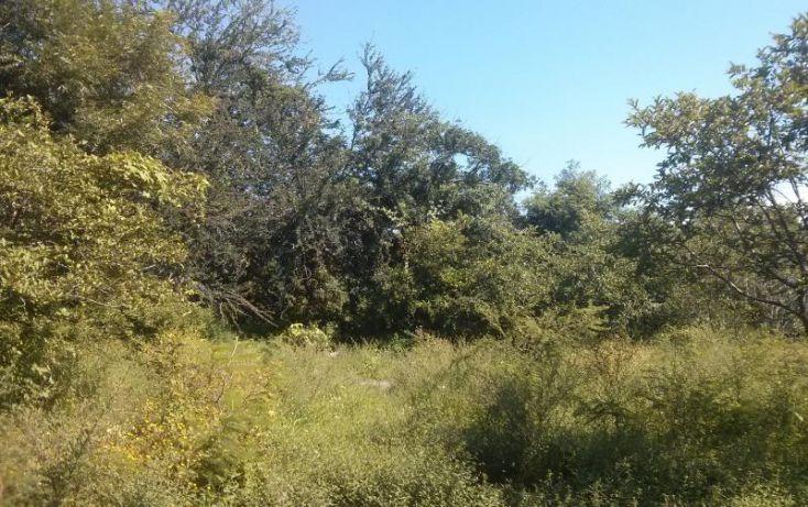 Foto de terreno habitacional en venta en a pie de carretera junto a coto vistas del lago 100, san nicolás de ibarra, chapala, jalisco, 1617162 no 03