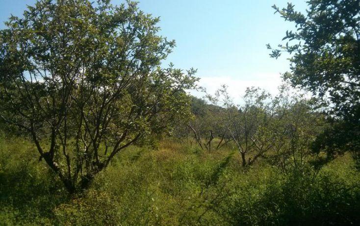 Foto de terreno habitacional en venta en a pie de carretera junto a coto vistas del lago 100, san nicolás de ibarra, chapala, jalisco, 1617162 no 04