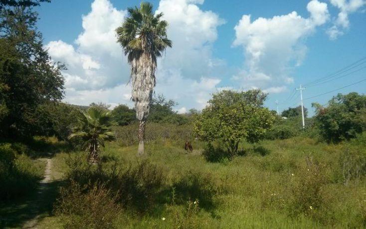 Foto de terreno habitacional en venta en a pie de carretera junto a coto vistas del lago 100, san nicolás de ibarra, chapala, jalisco, 1617162 no 05