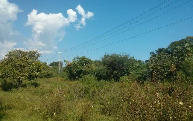 Foto de terreno habitacional en venta en a pie de carretera junto a coto vistas del lago 100, san nicolás de ibarra, chapala, jalisco, 1617162 no 06