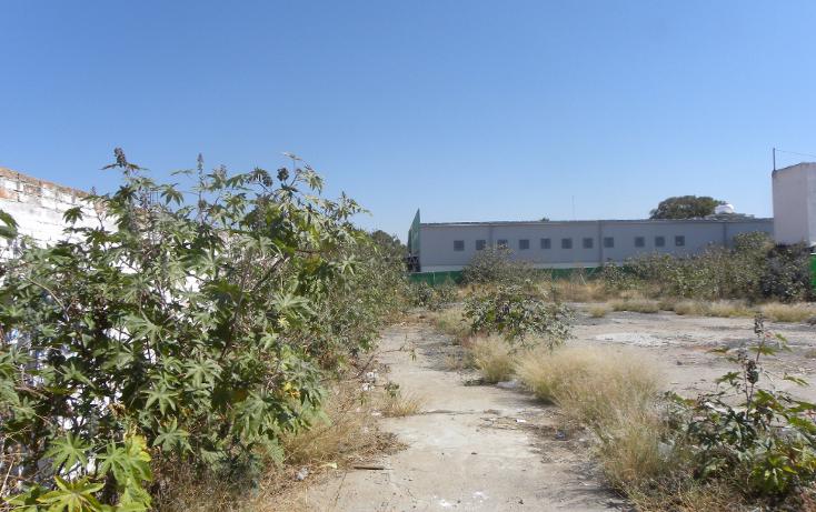Foto de terreno comercial en renta en  , abasolo centro, abasolo, guanajuato, 1331949 No. 37