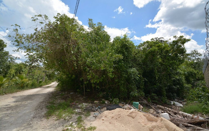 Foto de terreno habitacional en venta en  , abc, benito juárez, quintana roo, 2634887 No. 04