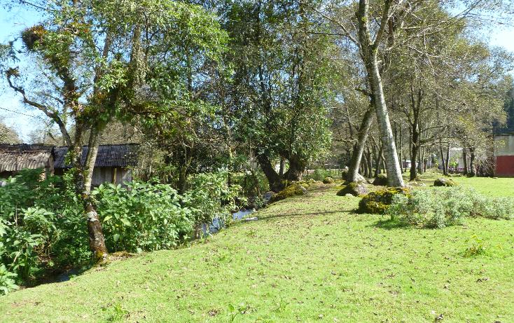 Foto de terreno habitacional en venta en  , acajete, acajete, veracruz de ignacio de la llave, 1144475 No. 01