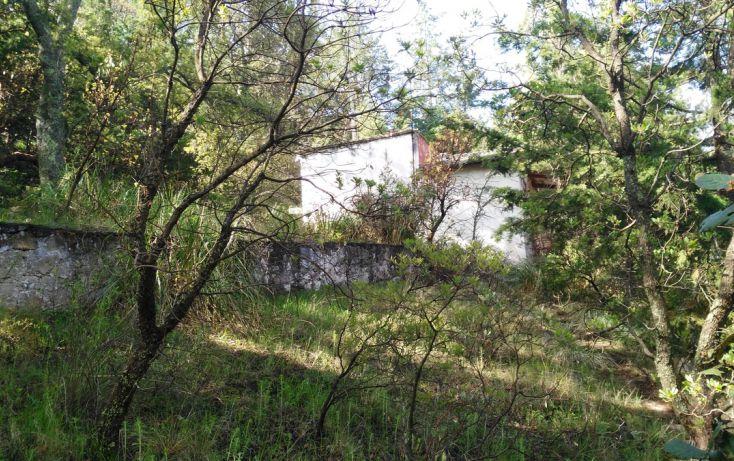 Foto de terreno habitacional en venta en, acambay centro, acambay, estado de méxico, 2033862 no 07