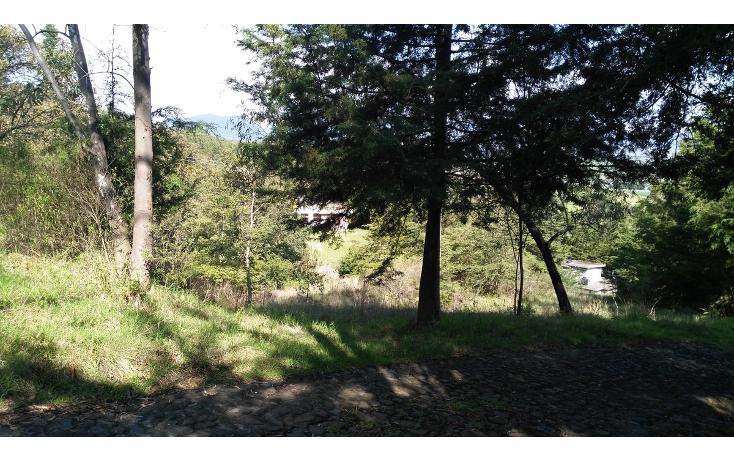 Foto de terreno habitacional en venta en  , acambay centro, acambay, m?xico, 2033862 No. 11