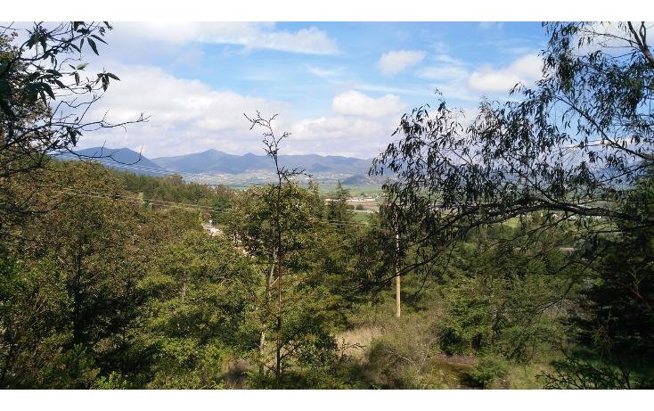 Foto de terreno habitacional en venta en  , acambay centro, acambay, m?xico, 2033862 No. 15