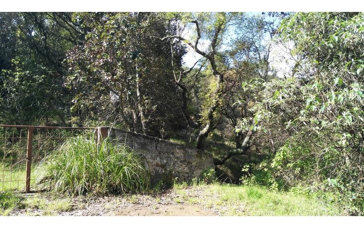 Foto de terreno habitacional en venta en  , acambay centro, acambay, m?xico, 2033862 No. 19