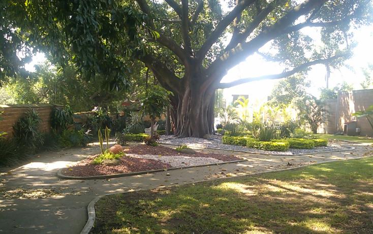 Foto de terreno habitacional en venta en  , acapatzingo, cuernavaca, morelos, 1632826 No. 02