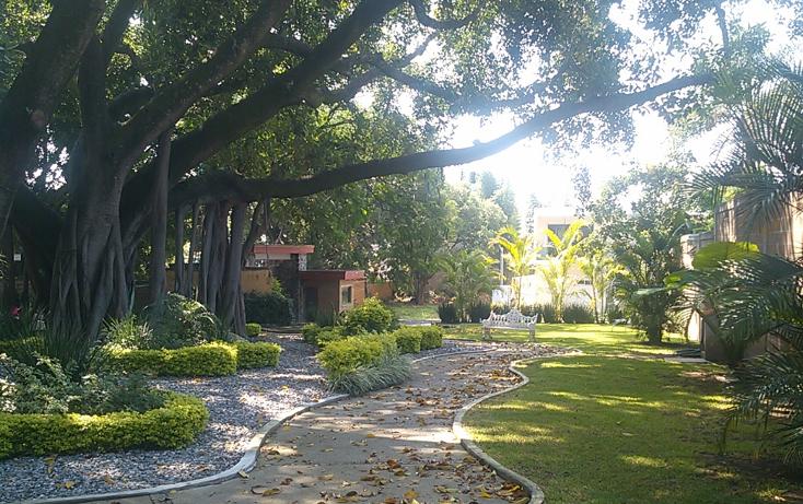 Foto de terreno habitacional en venta en  , acapatzingo, cuernavaca, morelos, 1632826 No. 05