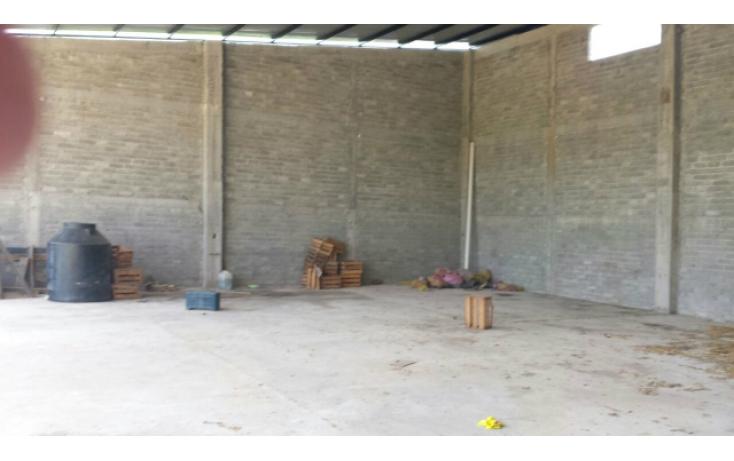 Foto de bodega en venta y renta en acapulquito, san jeronimito, petatlán, guerrero, 597838 no 06