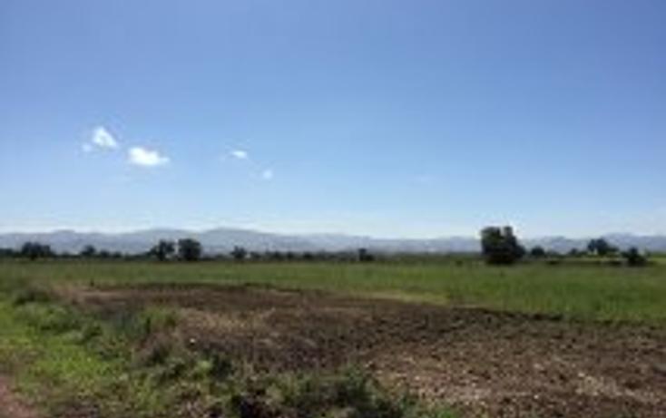 Foto de terreno habitacional en venta en  , acayuca, zapotlán de juárez, hidalgo, 1302663 No. 01