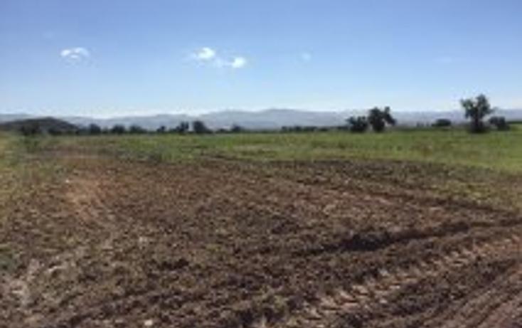 Foto de terreno habitacional en venta en  , acayuca, zapotlán de juárez, hidalgo, 1302663 No. 02
