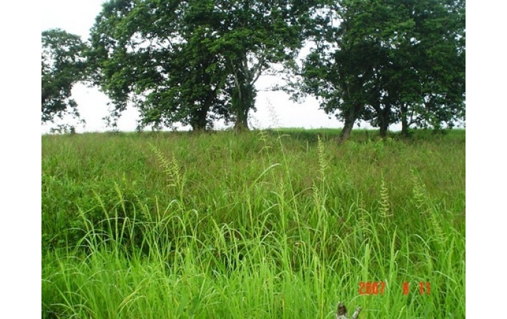 Foto de terreno habitacional en venta en, acayucan centro, acayucan, veracruz, 510889 no 04