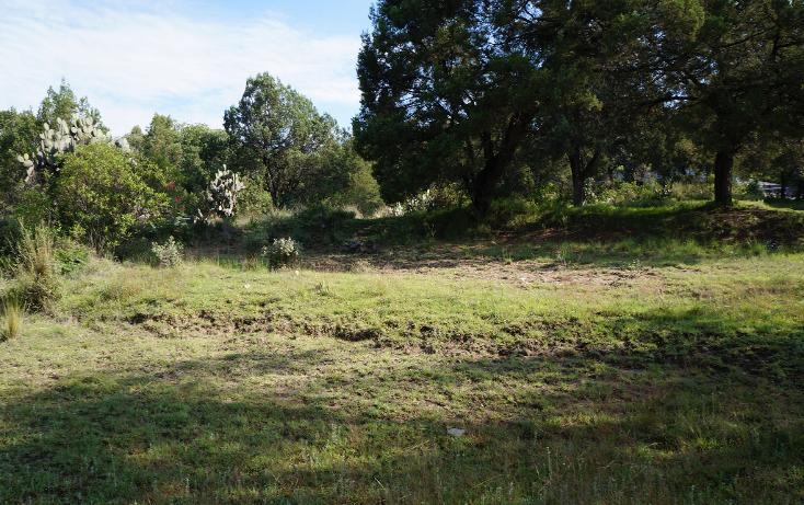 Foto de terreno habitacional en venta en  , actipac, tetla de la solidaridad, tlaxcala, 1665628 No. 05
