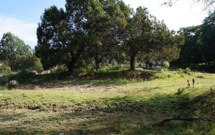 Foto de terreno habitacional en venta en  , actipac, tetla de la solidaridad, tlaxcala, 1665628 No. 06
